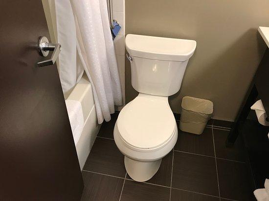 Standard toilet in King room. Bathroom was smallish but OK.