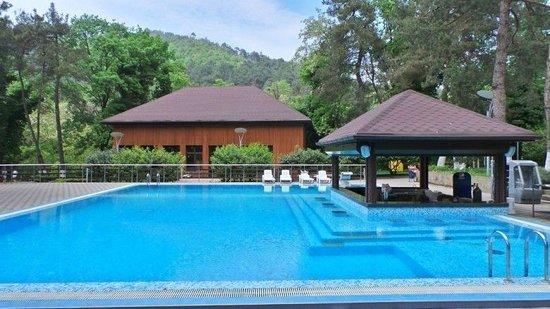 Аква-бар расположен в зоне бассейна в непосредственной близости от главного корпуса пансионата, что делает его привлекательным и удобным местом для отдыха, особенно для гостей с детьми.