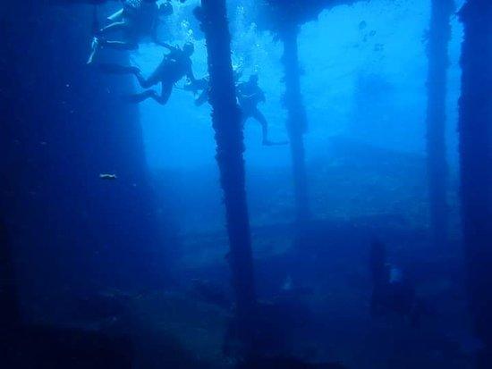 תמונה מExceptional diving in Bali
