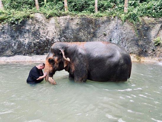 Einmaliges Erlebnis  So friedliche Tiere