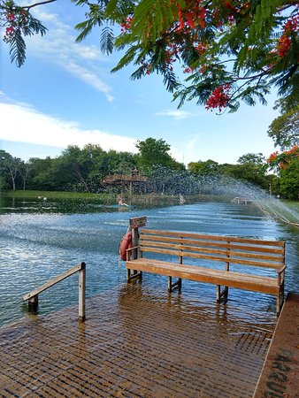 Rio Formoso Ecological Park Admission Ticket with Optional Activities: Atividades no lago!