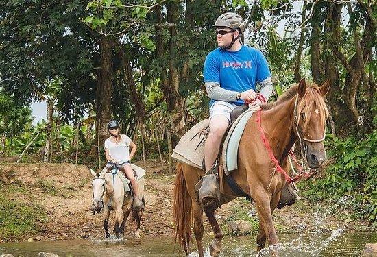 بونتا كانا, جمهورية الدومينيكان: Safari:  Excursiones en Safari, contacto directo con la naturaleza    Safari:  Excursions in Safari, direct contact with nature