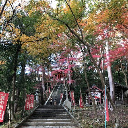A 15 minute walk from the JR station, front entrance is a whole bunch of stairs, but there is an easier path when you continue on the left.  Admission is required to visit inside the temple and this a shoes off inside, so wear your pretty socks 😉
