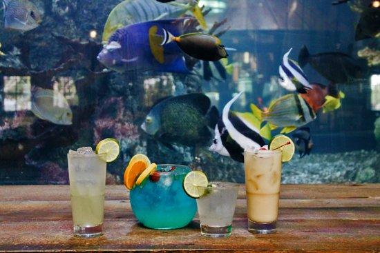 Assorted Cocktails with Saltwater Aquarium Backdrop