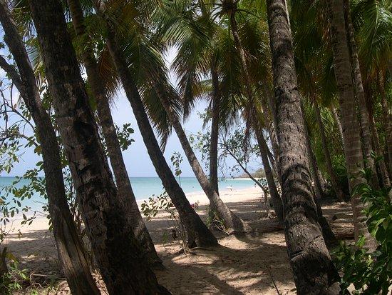 Souvenirs de Martinique --- Le calme parfait pour la détente aux Salines