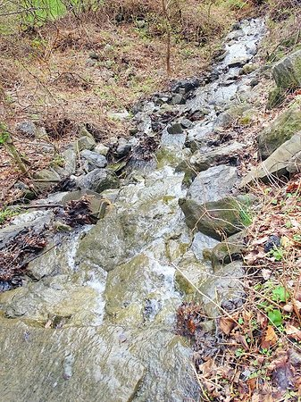along trail