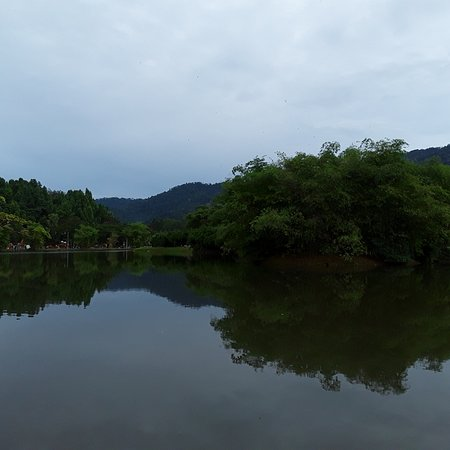 Taiping, מלזיה: The Taiping Lake Gardens are really quite lovely!.