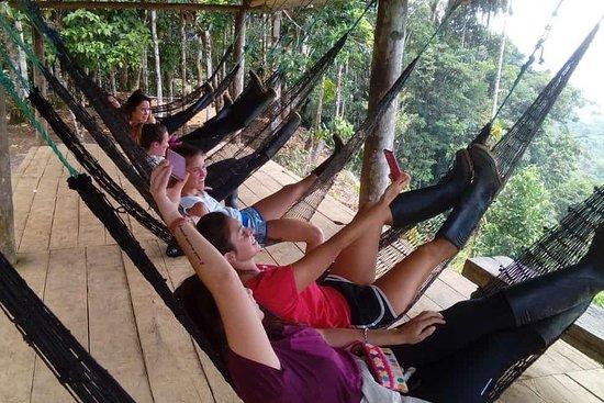 Excursion a la Selva - Amazonia - Indichuris - Hola Vida En Un Dia