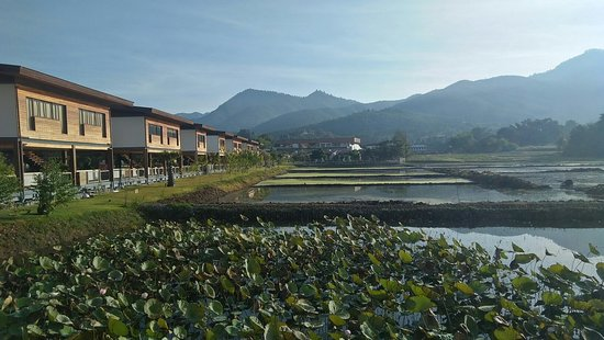 Inle lake by boat