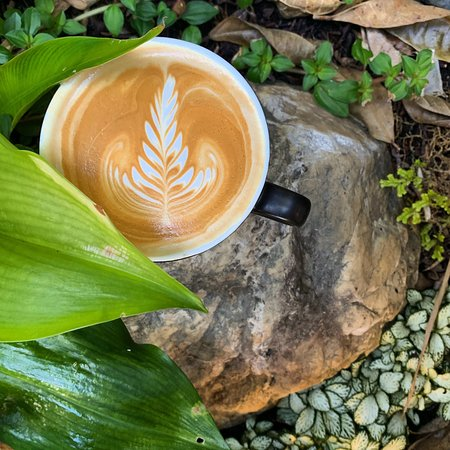 Specialty Coffee Made by Experienced Baristas