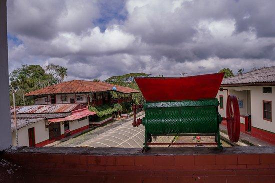 Hacienda La Pradera - Coffee Farm