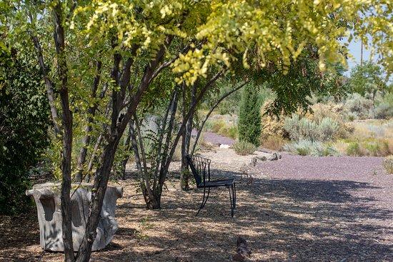 Orton Botanical Garden