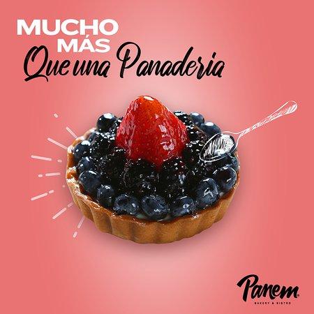 Panem es Mucho más que una Panadería. Aquí encontrarás una amplia variedad de postres, tartaletas, cheesecakes, y deliciosas creaciones de temporada.