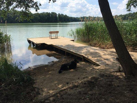Abkühlung nach der Golfrunde im Lake Radun - sehr sauberes Wasser !