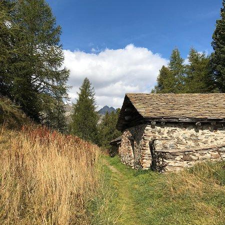 Silvaplana, Switzerland: Biketouren im Engadiner Indian Summer