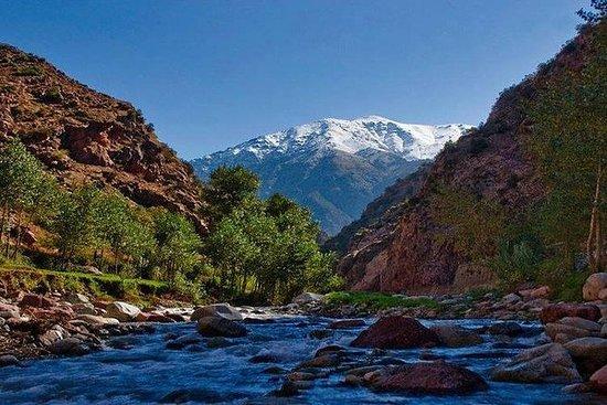 马拉喀什的游览谷Ourika