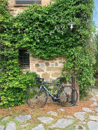 Veloce carbon road bike rental delivered at villa in Tuscany.
