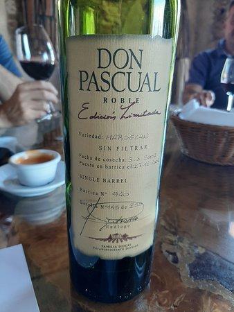 Visit and tasting Bodega Juanico: Vinho da família