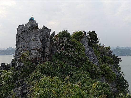 De Ha Noi: croisière de 2 jours et 1 nuit dans la baie de Lan Ha et la baie d'Ha Long : mirador de monkey island