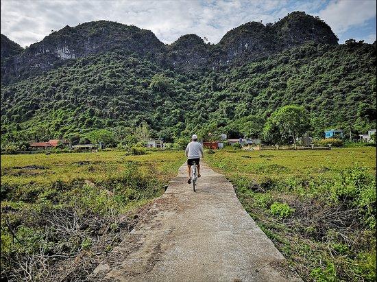 De Ha Noi: croisière de 2 jours et 1 nuit dans la baie de Lan Ha et la baie d'Ha Long : actividad: bici