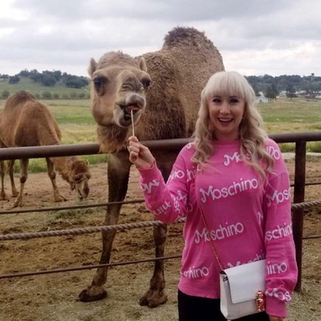 Some fall fun at Oasis Camel Dairy 2019