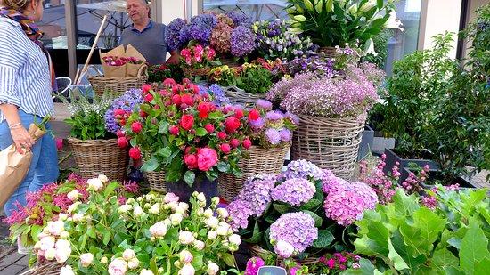 Early morning in Winterthur. Opening flower shops