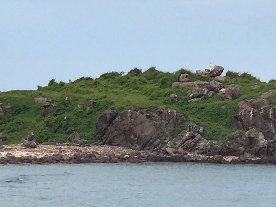 Facing small island
