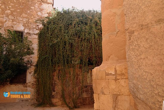South Sinai, Egypt: Holy Tree Religious Egypt Tourist Places in St. Catherine in Sinai Tourist Attractions – Hurghada Excursions https://hurghadalovers.com/holy-tree-in-egypt/