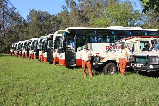 Pollman's Tours & Safaris