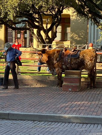 Fort Worth Stockyards National Historic District 2019