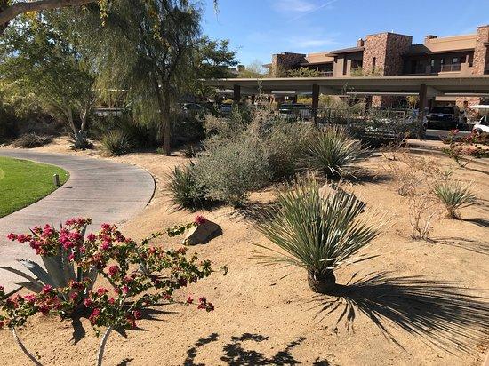 Palm Desert, CA: Desert Willow Golf Resort - it is beautiful