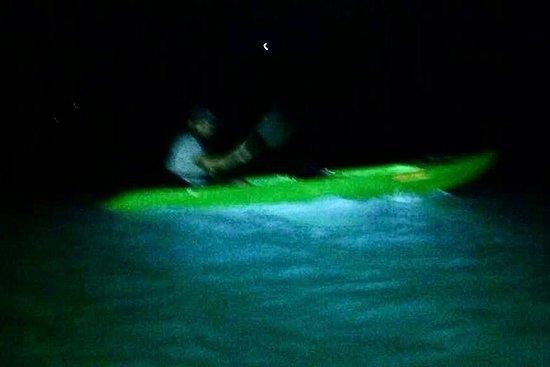 Vieques Kayaks Bio Bay