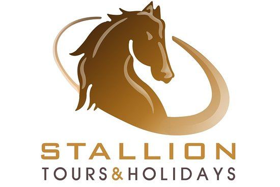STALLION TOURISM LLC