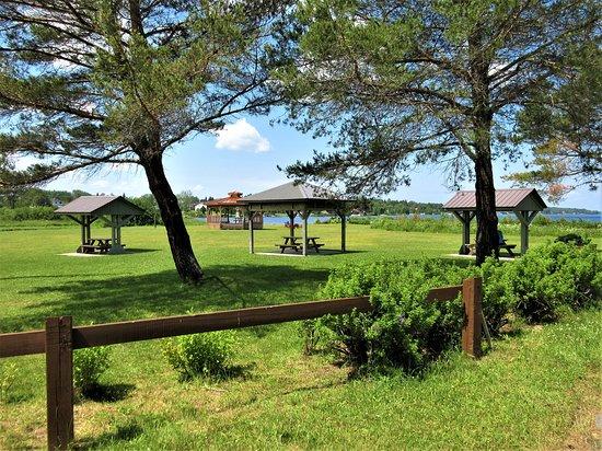 Saint-Félix-d'Otis, Canada: Tonnelle, tables à pique-nique, halte-routière du Lac Saint-Félix d'Otis