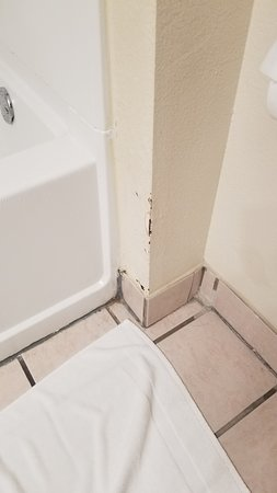 Moldy grout, and chipped paint in the bathroom.