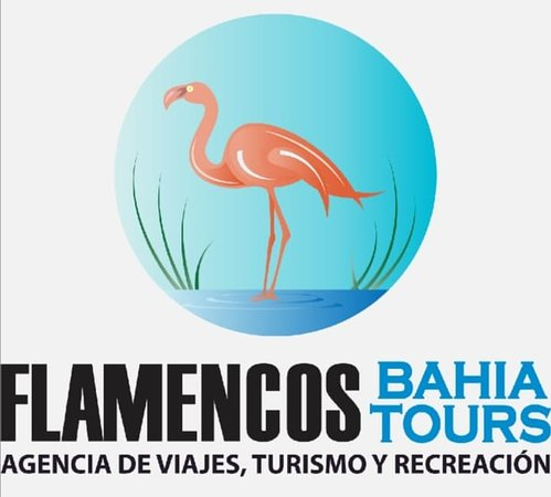 Flamencos Bahia Tours