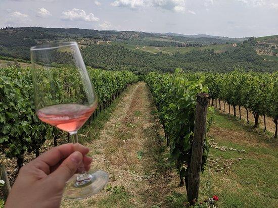키안티 맛 : 피렌체에서의 토스카나 치즈, 와인 및 도시락 사진