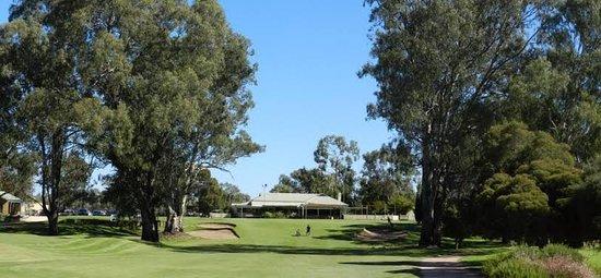 Mildura, أستراليا: 18th back towards clubhouse.