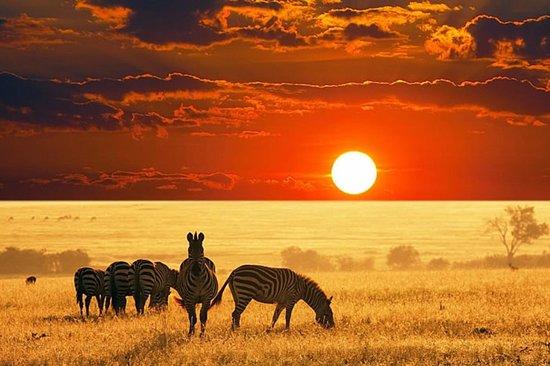 Vumbula Tours & Safaris