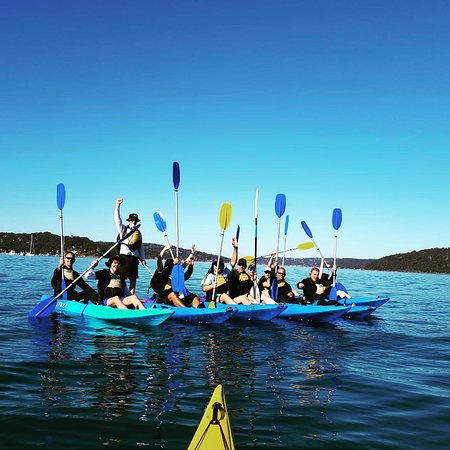 Pittwater, Australia: Some pictures from the standard morning tours