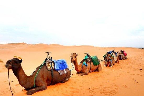 Morocco 9 Days Desert Tour From Marrakech 이미지