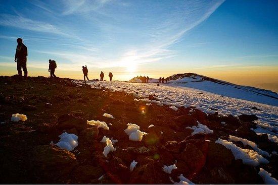 Kilimanjaro in 1 day.