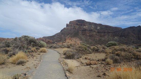 Tenerife. Parque Nacional del Teide. Los Roques de Garcia (Agosto 2019)