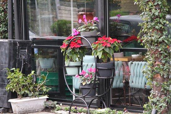 Omerta Caffee Restaurant