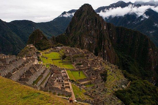 View Latin America