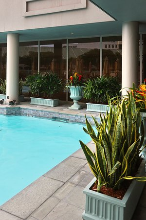 The Spa at Windsor Court, 300 Gravier St on the Fourth Floor of the Windsor Court Hotel in the Central Business District of New Orleans - With Full-service Spa, Salt Water Pool, and Fitness Center - Saltwater Rooftop Pool (on top of 3rd floor)