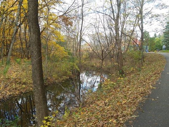 Maple Creek Park