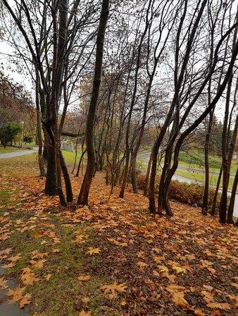Park area leading into Borisova Gradina