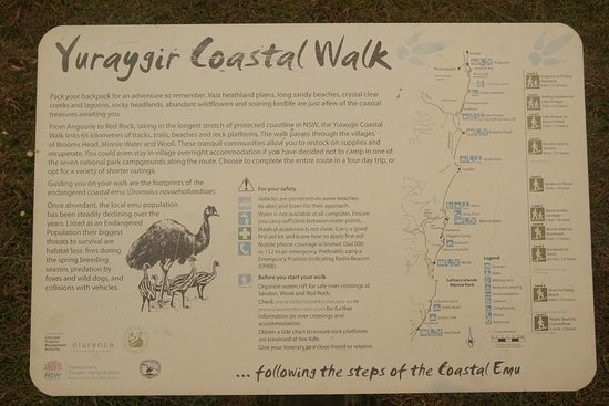 Headland is part of the Yuraygir Walk