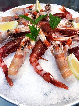 Antipasto di pesce crudo